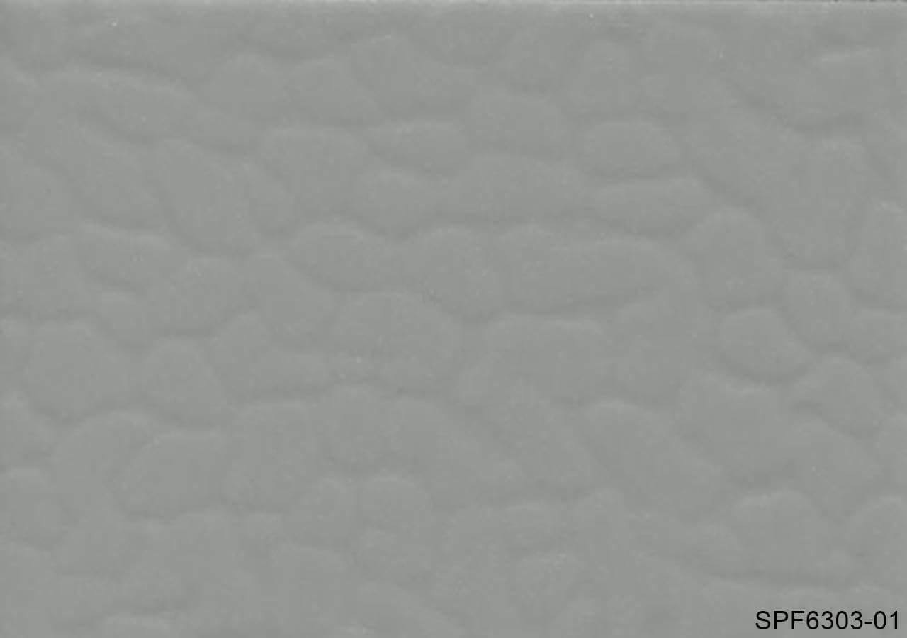 SPF6303-01